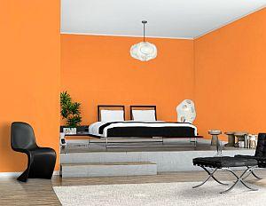 narancs háló