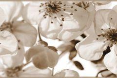 WB8216 cikkszámú tapéta.Különleges felületű,különleges motívumos,természeti mintás,virágmintás,barna,bézs-drapp, bordűr
