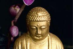 FTN V 2805 cikkszámú tapéta.Virágmintás,arany,fekete,pink-rózsaszín,vlies poszter, fotótapéta