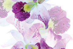 FTN V 2921 cikkszámú tapéta.Virágmintás,fehér,lila,pink-rózsaszín,zöld,vlies poszter, fotótapéta