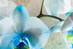 FTN XL 2518 cikkszámú tapéta.Virágmintás,bézs-drapp,fehér,kék,vlies poszter, fotótapéta