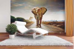 FTN XXL 0438 cikkszámú tapéta.állatok,barna,fehér,szürke,zöld,vlies poszter, fotótapéta