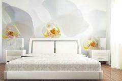 FTN XXL 0466 cikkszámú tapéta.Virágmintás,fehér,sárga,vlies poszter, fotótapéta