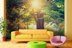 FTN XXL 2424 cikkszámú tapéta.Természeti mintás,barna,sárga,zöld,vlies poszter, fotótapéta