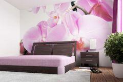 FTS 0049 cikkszámú tapéta.3d hatású,természeti mintás,virágmintás,fehér,fekete,lila,narancs-terrakotta,pink-rózsaszín,zöld,papír poszter, fotótapéta