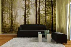 FTS 0181 cikkszámú tapéta.3d hatású,természeti mintás,fehér,fekete,zöld,papír poszter, fotótapéta