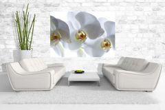 FTS S 0832 cikkszámú tapéta.Virágmintás,fehér,sárga,papír poszter, fotótapéta