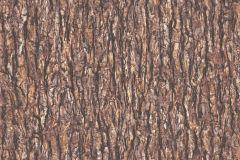 36872-2 cikkszámú tapéta.Fa hatású-fa mintás,különleges felületű,barna,bézs-drapp,súrolható,illesztés mentes,vlies tapéta