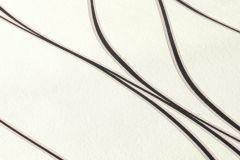 3713-17 cikkszámú tapéta.Absztrakt,dekor,fehér,fekete,lemosható,illesztés mentes,vlies tapéta
