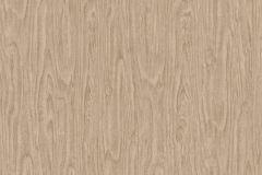 37052-2 cikkszámú tapéta.Fa hatású-fa mintás,különleges felületű,bézs-drapp,súrolható,vlies tapéta