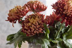 38617 cikkszámú tapéta.Virágmintás,lila,szürke,lemosható,vlies tapéta
