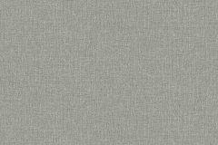 3565 cikkszámú tapéta.Egyszínű,szürke,lemosható,illesztés mentes,vlies tapéta