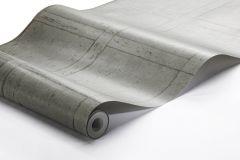 1173 cikkszámú tapéta.Fa hatású-fa mintás,különleges felületű,szürke,lemosható,vlies tapéta