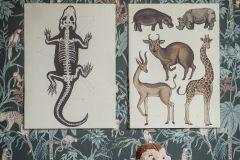 7463 cikkszámú tapéta.állatok,gyerek,rajzolt,barna,fekete,kék,zöld,lemosható,vlies tapéta