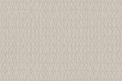 6224 cikkszámú tapéta.Absztrakt,csíkos,geometriai mintás,különleges motívumos,rajzolt,retro,szürke,lemosható,vlies tapéta