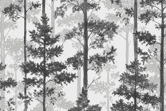 8827 cikkszámú tapéta.Fa hatású-fa mintás,különleges motívumos,természeti mintás,ezüst,fehér,szürke,lemosható,vlies tapéta