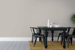 4654 cikkszámú tapéta.Különleges felületű,egyszínű,barna,gyengén mosható,illesztés mentes,vlies tapéta