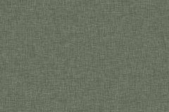 4558 cikkszámú tapéta.Egyszínű,különleges felületű,zöld,lemosható,illesztés mentes,vlies tapéta