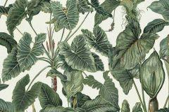 6303-07 cikkszámú tapéta.Különleges felületű,természeti mintás,barna,fehér,zöld,lemosható,vlies tapéta