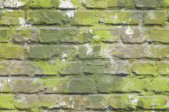 L33504 cikkszámú tapéta.Kőhatású-kőmintás,fehér,zöld,gyengén mosható,vlies tapéta