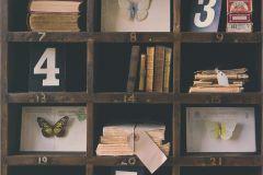 51152008 cikkszámú tapéta.3d hatású,állatok,feliratos-számos,különleges felületű,barna,piros-bordó,sárga,szürke,zöld,súrolható,vlies tapéta