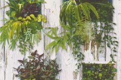 51157104 cikkszámú tapéta.Fa hatású-fa mintás,barna,szürke,zöld,gyengén mosható,papír tapéta