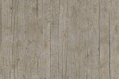 51181308 cikkszámú tapéta.Fa hatású-fa mintás,különleges felületű,barna,súrolható,illesztés mentes,vlies tapéta