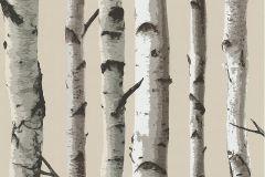 FD31051 cikkszámú tapéta.Fa hatású-fa mintás,különleges felületű,természeti mintás,barna,bézs-drapp,szürke,  tapéta