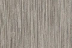 5954-11 cikkszámú tapéta.Egyszínű,barna,bézs-drapp,lemosható,illesztés mentes,vlies tapéta