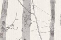 6305-10 cikkszámú tapéta