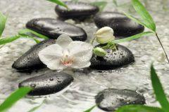 8-319 cikkszámú tapéta.Virágmintás,fehér,fekete,zöld,gyengén mosható,papír poszter, fotótapéta