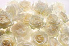XXL4-007 cikkszámú tapéta.Virágmintás,fehér,sárga,gyengén mosható,vlies poszter, fotótapéta