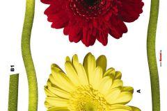 17011 cikkszámú tapéta.Természeti mintás,virágmintás,piros-bordó,sárga,zöld,anyagában öntapadós falmatrica