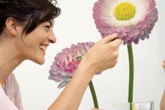 17023 cikkszámú tapéta.Természeti mintás,virágmintás,pink-rózsaszín,sárga,zöld,fehér,anyagában öntapadós falmatrica