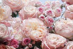 8-946 cikkszámú tapéta.3d hatású,pink-rózsaszín,vajszín, poszter, fotótapéta