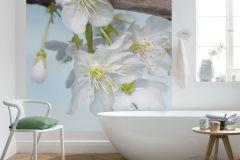XXL2-033 cikkszámú tapéta.3d hatású,fotórealisztikus,természeti mintás,virágmintás,barna,fehér,kék,sárga,vlies poszter, fotótapéta