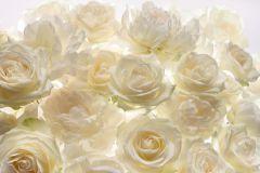 XXL4-007 cikkszámú tapéta.3d hatású,virágmintás,fehér,sárga,vajszín,vlies poszter, fotótapéta