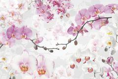 XXL4-032 cikkszámú tapéta.Virágmintás,fehér,pink-rózsaszín,szürke,vlies poszter, fotótapéta