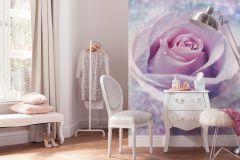 XXL2-020 cikkszámú tapéta.Fotórealisztikus,virágmintás,fehér,lila,pink-rózsaszín,szürke,gyengén mosható,vlies poszter, fotótapéta
