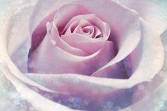 XXL2-020 cikkszámú tapéta.Fotórealisztikus,gyerek,gyöngyös,pöttyös,virágmintás,kék,lila,pink-rózsaszín,gyengén mosható,vlies poszter, fotótapéta