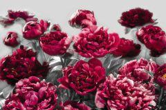 XXL4-002 cikkszámú tapéta.Fotórealisztikus,gyerek,virágmintás,fehér,pink-rózsaszín,szürke,gyengén mosható,vlies poszter, fotótapéta