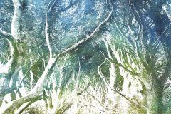 6024A-VD2 cikkszámú tapéta.Fa hatású-fa mintás,különleges motívumos,természeti mintás,kék,sárga,szürke,zöld,vlies poszter, fotótapéta