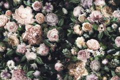 6035A-VD4 cikkszámú tapéta.Fotórealisztikus,különleges felületű,különleges motívumos,virágmintás,bézs-drapp,lila,narancs-terrakotta,pink-rózsaszín,szürke,zöld,vlies poszter, fotótapéta