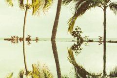 P012-VD1 cikkszámú tapéta.Fotórealisztikus,természeti mintás,zöld,vlies poszter, fotótapéta