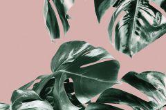 P016A-VD1 cikkszámú tapéta.Természeti mintás,pink-rózsaszín,zöld,vlies poszter, fotótapéta