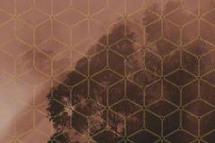 PSH099-VD2 cikkszámú tapéta.Geometriai mintás,természeti mintás,piros-bordó,vlies poszter, fotótapéta