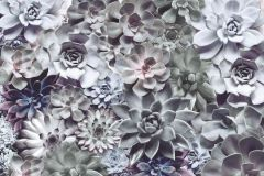 8-962 cikkszámú tapéta.Fotórealisztikus,természeti mintás,lila,pink-rózsaszín,zöld,papír poszter, fotótapéta