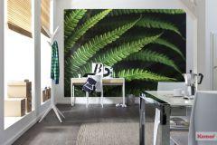 V7-750 cikkszámú tapéta.Fotórealisztikus,természeti mintás,zöld,vlies poszter, fotótapéta