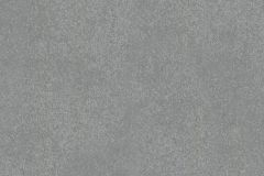 57917 cikkszámú tapéta.Egyszínű,szürke,lemosható,illesztés mentes,vlies tapéta