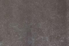 56841 cikkszámú tapéta.Egyszínű,barna,lemosható,illesztés mentes,vlies tapéta